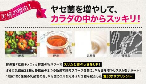 こんぶ茶生サプリメント