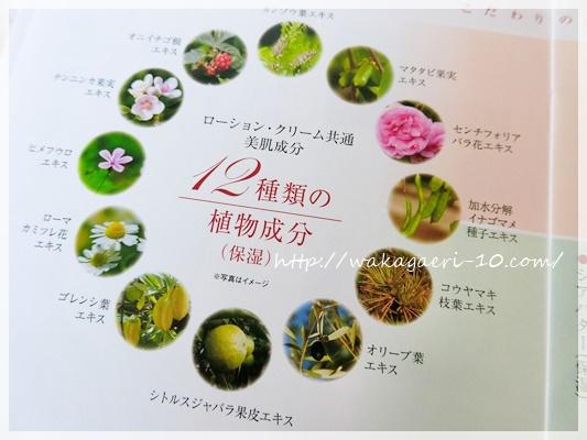 グリコ 化粧品 4000円