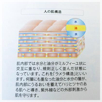 ラメラ構造 オールインワン