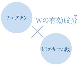 加藤和子 パーフェクトワン