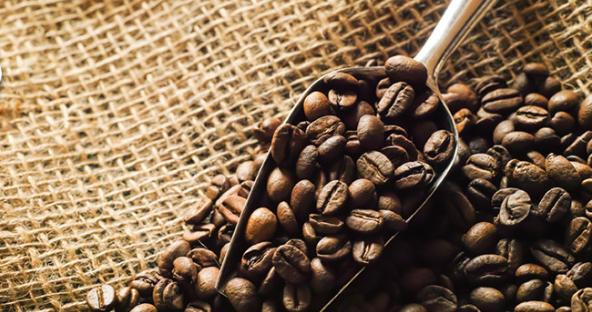 痩せるコーヒー エクササイズ