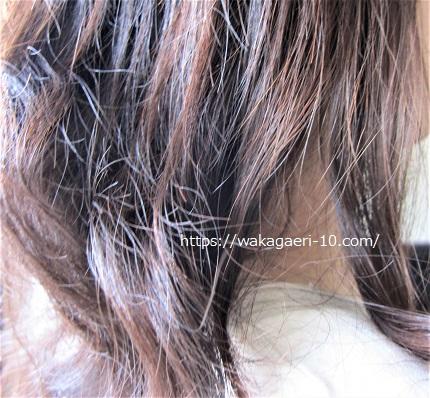 ベルタシャンプー 抜け毛