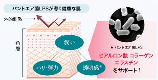 lps 化粧品