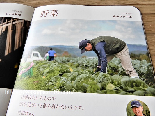 野菜通販 無農薬 おすすめ